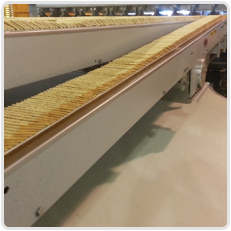 Conveyor Industry